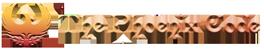 The Phoenix Code Logo